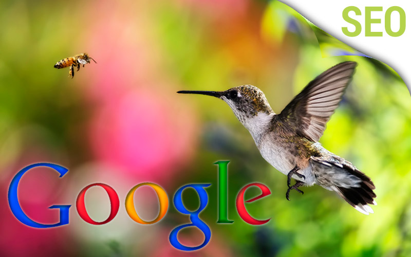 Google's Hummingbird Update