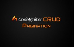 Codeigniter CRUD Pagination
