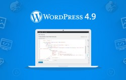 WordPress 4.9-Features